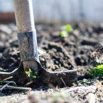 Tips om droogte in de tuin te voorkomen